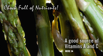 Click to Visit Our Fruit & Veggie Database: Asparagus