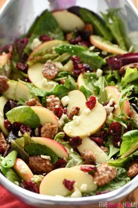 honeycrisp-apple-cranberry-pecan-blue-cheese-mixed-greens-salad-thanksgiving-christmas-recipe-by-five-heart-home_700pxbowl