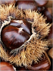 Nutrition label for Chestnuts