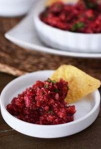 cranberry-salsa3