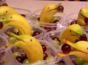 dolphin bananas