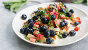 The Everyday Chef: How to Make the Ultimate Grilled Cheese! Grilled Halloumi Cheese w/ Berries & Herbs