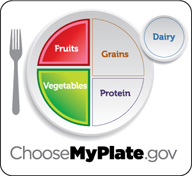 Healthy Plate Icon Replaces MyPyramid : Fruits And Veggies More Matters.org