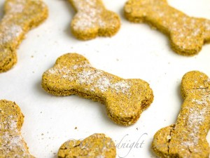 pumpkin-dog-biscuit-1-43-o-1024x768